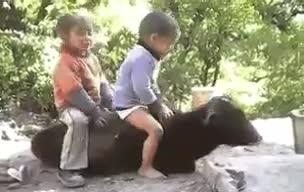 Funny | kids babies baby | animals | Tamil Whatsapp Status Videos | KunduBulb