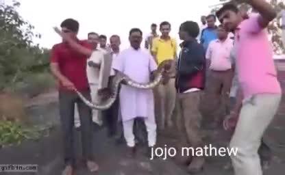 Funny | animals | Tamil Whatsapp Status Videos | KunduBulb