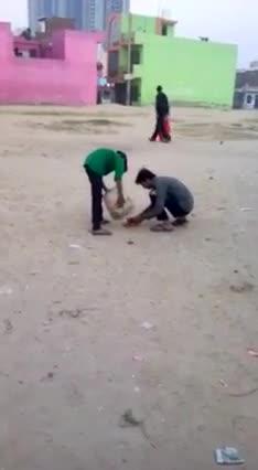 Funny   animals   funny   Tamil Whatsapp Status Videos   KunduBulb