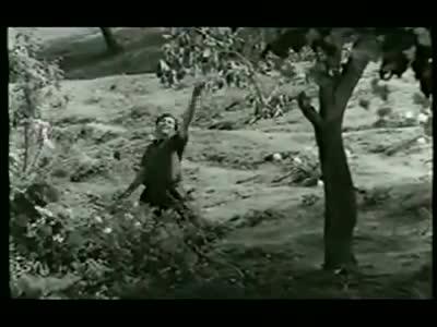 Emotions | mgr | old | philosophy | boys | Tamil Whatsapp Status Videos | KunduBulb