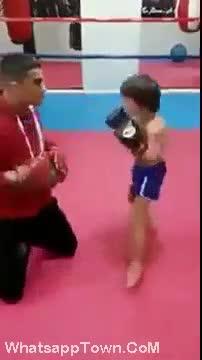 Funny   stunt   kids babies baby   boys   Tamil Whatsapp Status Videos   KunduBulb
