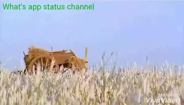 thanicha malar | mudhalvan | Tamil Whatsapp Status Videos | KunduBulb