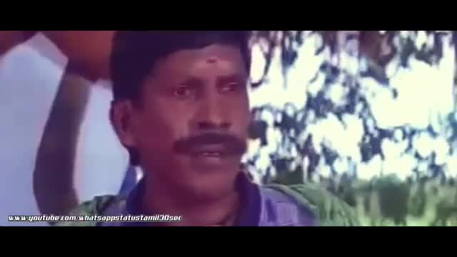 Comedy | Funny | comedy | Tamil Whatsapp Status Videos | KunduBulb
