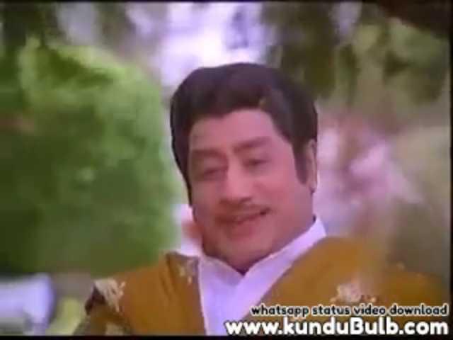 Emotions Brother Sentiments Padikathavan Tamil